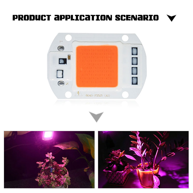 COB Light 20W/30W/50W Lens Reflector Floor Lights Spotlight Source DIY LED COB Chip COB Chip Light 1Set Integrated