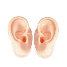 1 par de exibição de ouvido de silicone, modelo de ouvido para aparelhos auditivos iem exposição (1 ouvido esquerdo + 1 ouvido direito))