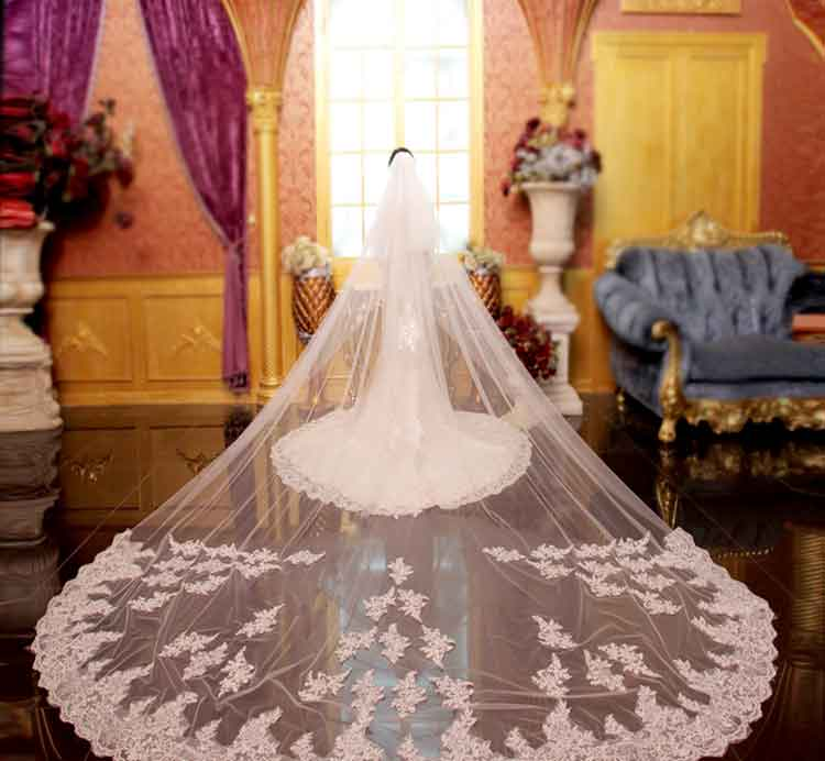Romantic 5M Wedding Veil Cathedral Two Layer Lace Appliqued Long Bridal Veils With Comb Woman Marry Gifts 2020 Accessories BV12