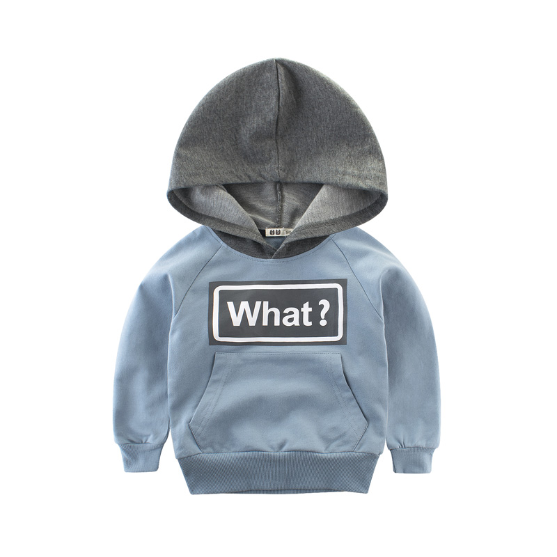 Clothing Sets Children Boys Girls Fashion Clothes Kids Toddler Tracksuit Autumn Baby Hoodies  And Pants  Suits Sport 5