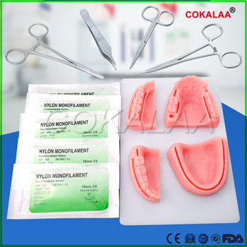 High Quality Dental Simulation oral suture model with needle Gum suture teaching training equipment skill practice image