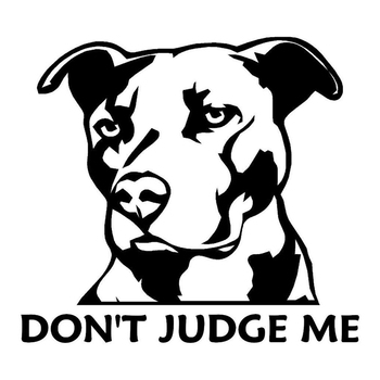 12.9cm*11cm Pit Bull Dog Don't Judge Me Stickers Decals Vinyl Car-Styling Car Window Door Trunk Decals for Mercedes Benz BMW KIA image