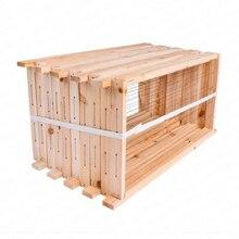 Продукты для улей полный набор пчел полу-готовая коробка-гнездо пчела предназначенный для улей специальное гнездо рамка коробка для пчеловодства инструменты для пихты