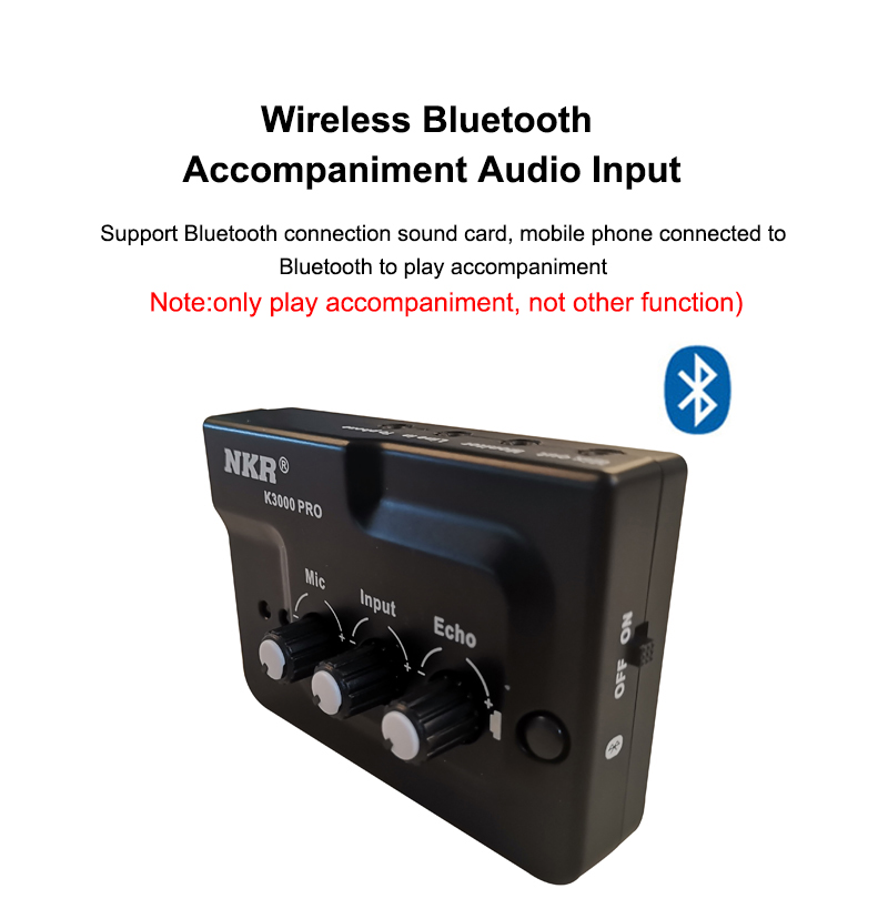 cheapest Professional Live Broadcast Recording Sound Card Echo Audio Interface External Dual Inputs Plug and Play for Mic Phone Musicial