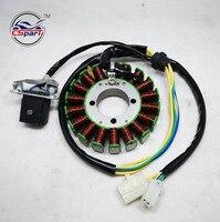 Magneto Stator 18 Pole Coil 5 Wire 200C 250CC CG Bashan Shineray Jinling Taotao Dirt Pit Bike ATV Quad Parts