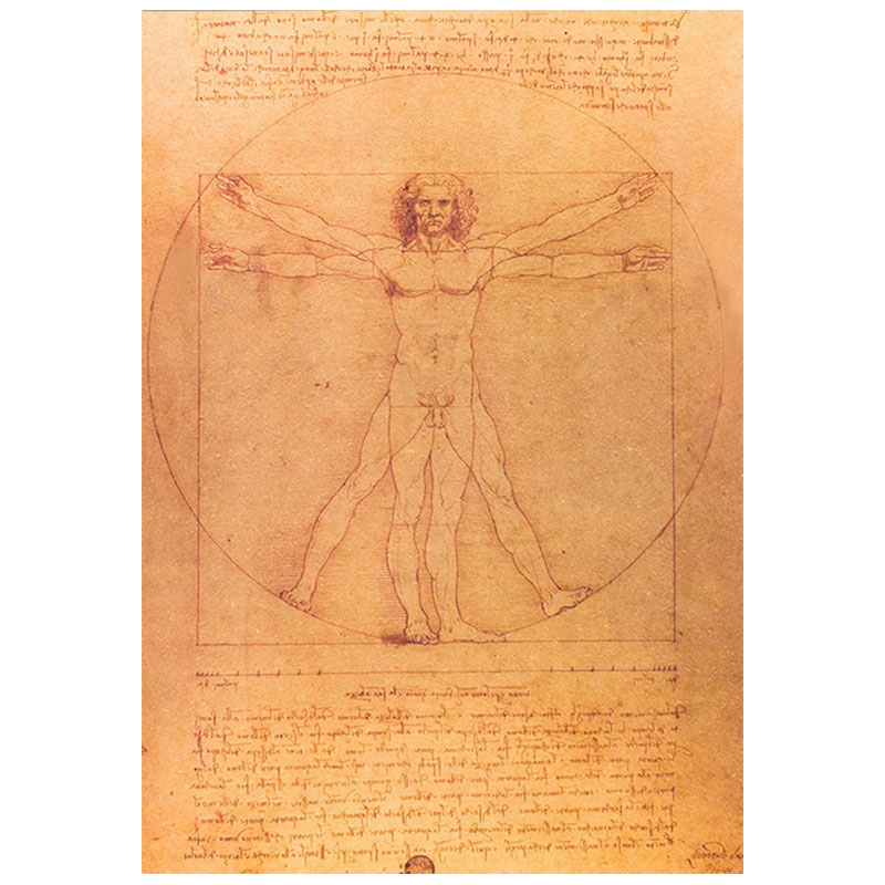 Leonardo da Vinci sketched manuscript of the human body vintage kraft paper poster bar cafe home decor painting wall stickers