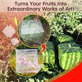 1 Uds., invernadero, Magic, forma cuadrada, sandía, moldes para el crecimiento, jardín,...