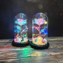 LED Rose DIY First Flower Rose In Glass Dome Forever Rose Preserved Rose Special Romantic Gift(China)