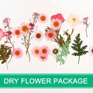 Прессованный цветок микс сушеных цветов DIY Искусство Цветочные Декорации коллекция подарок ремесло Сделай Сам GHS99