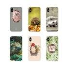 Cute Hedgehog Access...