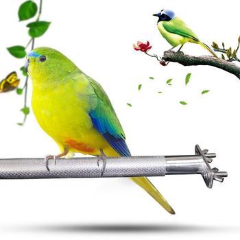 Stainless steel Birdcage Stands Bird Perch Parrot Stainless Steel Bird Standing Rod Teether M Bird cage Bird supplies 3
