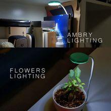 360 Degree Mini LED Light Aquarium Fish Tank for Water Plant Grow USB Charge  GXMA