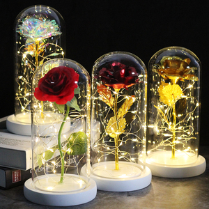 2020 Valentine's Day Gift Beauty and Beast Flower Eternal Rose In Glass Dome Led Lamp Decoration Best Mom Gift for Girlfriend