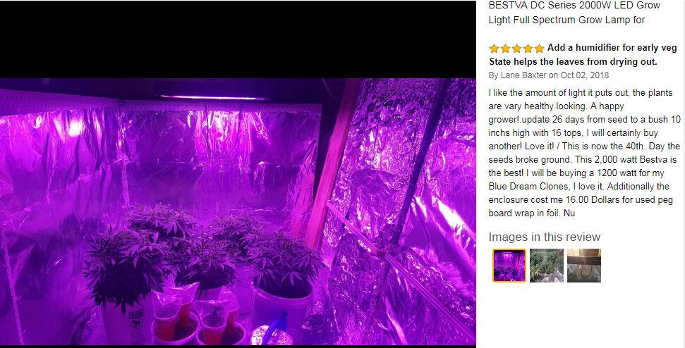Image 5 - BestVA LED grow light 600W/1000W/1200W/1500W/2000W/3000W Full Spectrum for Indoor Greenhouse grow tent phyto lamp for plants-in Growing Lamps from Lights & Lighting