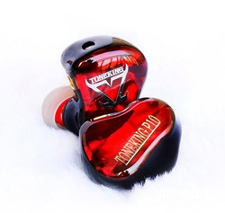 TONEKING Musicmaker P10 Custome Panel Flat Diaphragm Hifi Music Monitor DJ Studio Earphones Male Model Custom Flat Earbuds