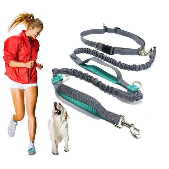 Pet product Hondenlijn Running belt Jogging Sport Verstelbare Nylon Hond touw Met Reflecterende Strip Pet Accessoires Handen Gratis