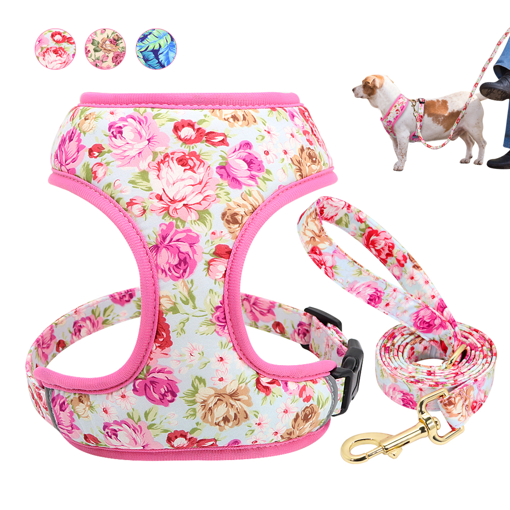 Cute Printed Dog Harness Leash Set Soft Mesh Pet Puppy Cat Harness Adjustable Walking Lead For Small Medium Dogs Cats Chihuahua