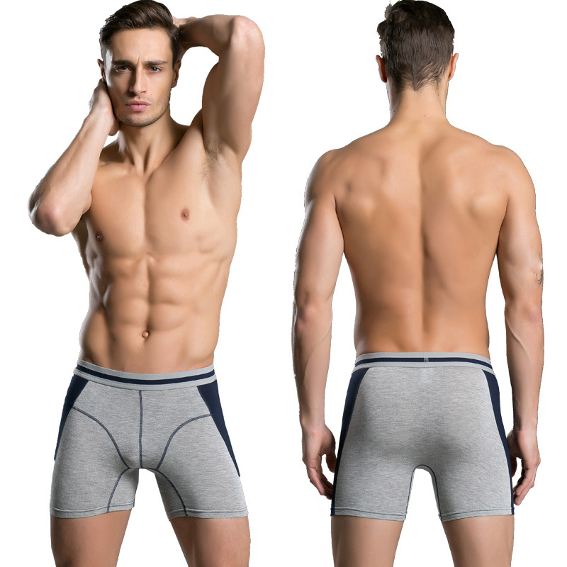 4Pcs/lot Long Leg Mens Boxers Shorts Male Panties Slip Underpants U-Convex Man Underwear Sexy Comfortable  Boxer Male M-2XL