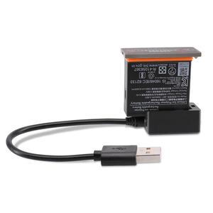 Smart Fast Lithium Battery Cha