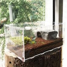 Прозрачный акриловый ящик для рептилий Пауки Черепаха Ящерица