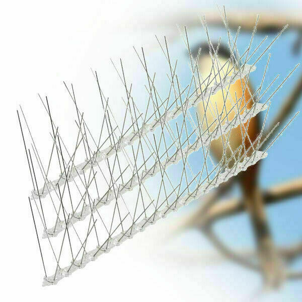 Brand New 25cm Metal Wall Fence Spikes Bird Pigeon Deterrent Anti Perch Control Repeller