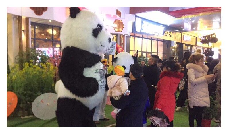 urso polar para anunciar 2 m de