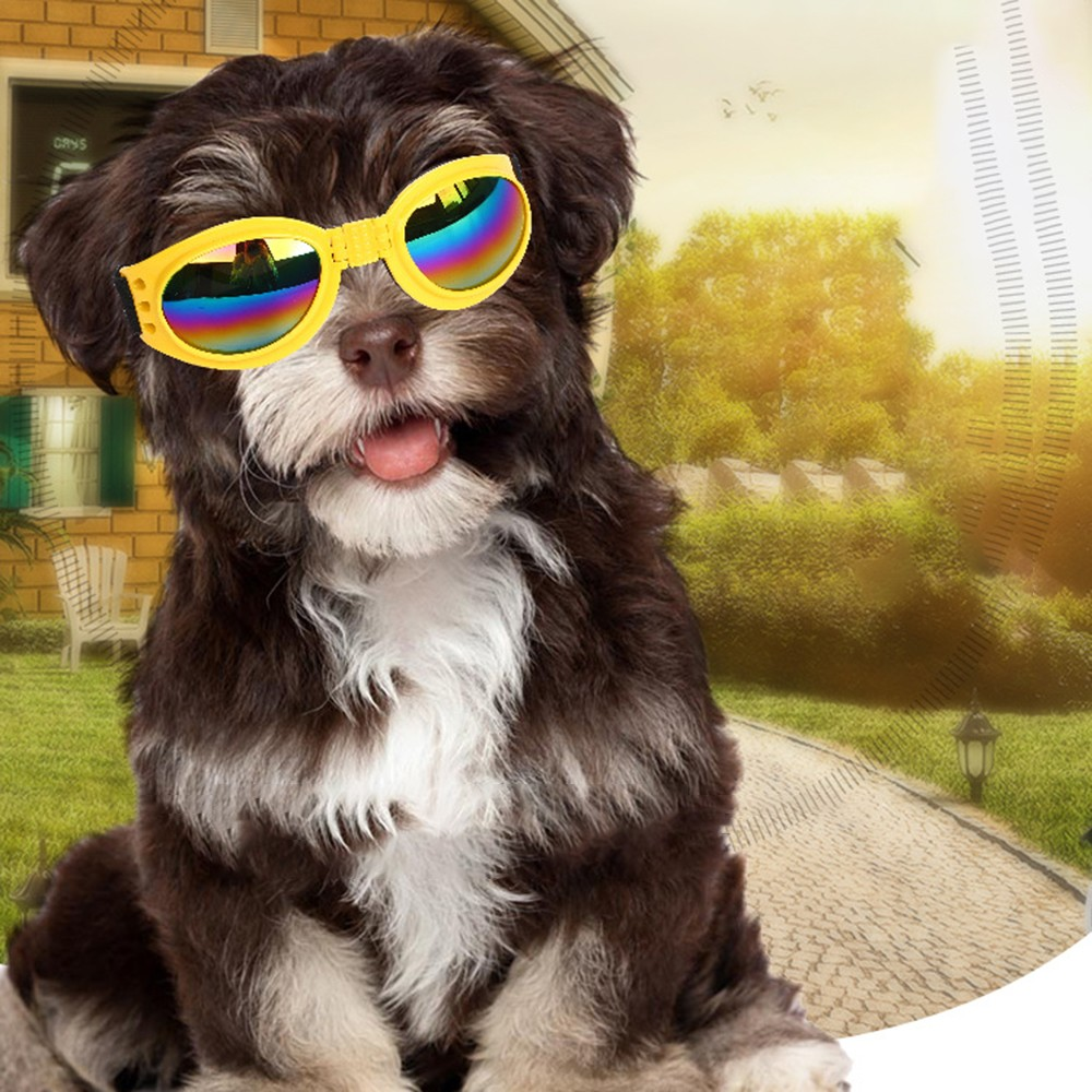 UV Sunglasses Waterproof Dog Protection Goggles Foldable Pet Dog Glasses Pet Eyewear Medium Large Dog Pet Glasses in Dog Accessories from Home Garden