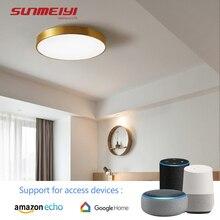 Modern Copper LED Ceiling Lights with Bluetooth Speaker For Living room Bedroom Kitchen Corridor APP Bluetooth Music Smart Light цены