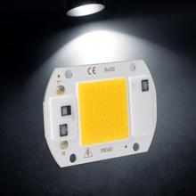 2Pcs AC 220V 20W Aluminum High Bright Power Integrated LED COB Chips Lights Source