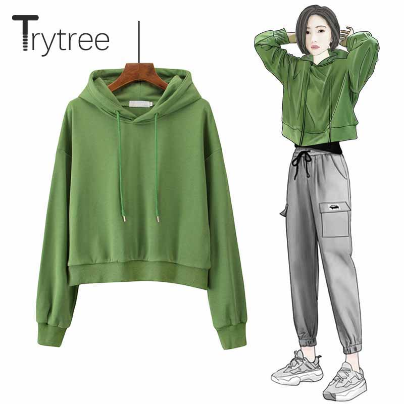 Trytree 2019 Autumn Winter Women Sweatshirt Casual 4 Colour Solid Loose Hooded Collar Short Sweatshirt Tops