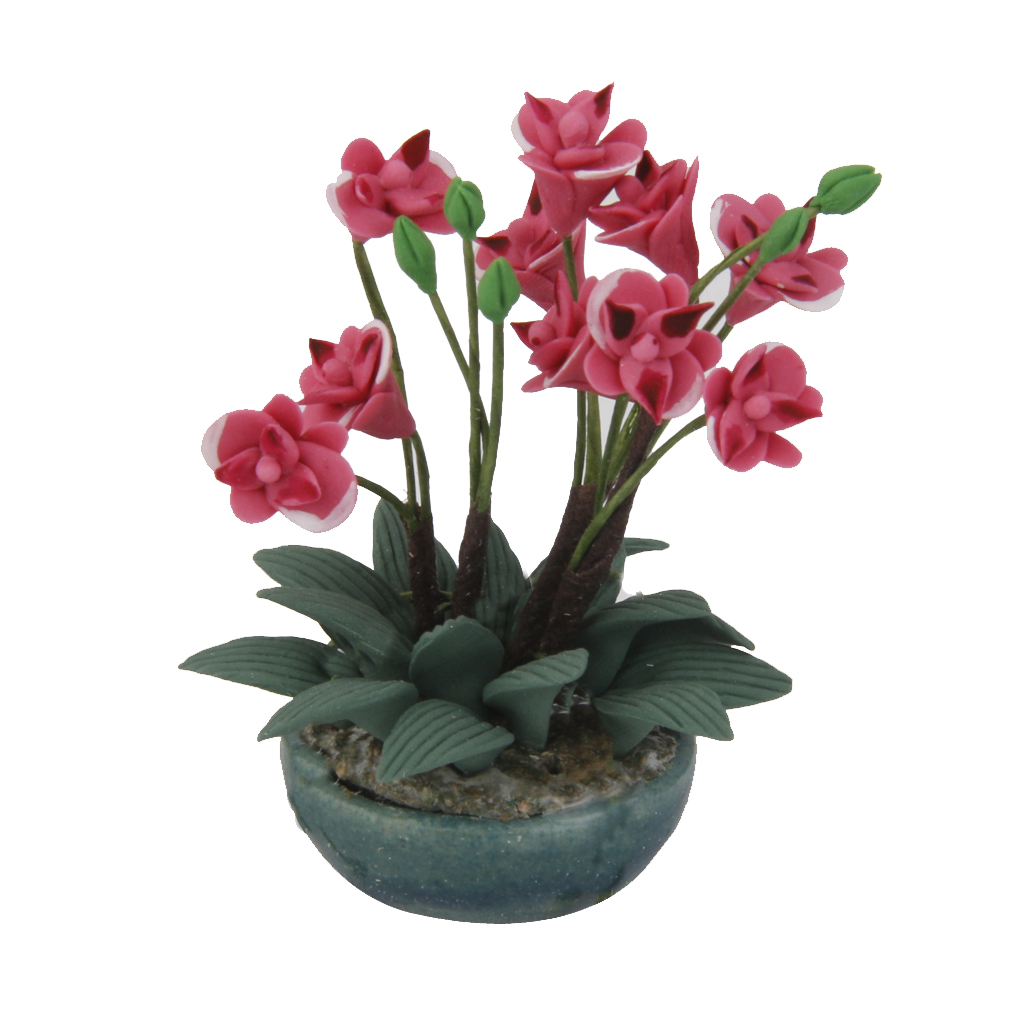 1:6 Scale Large Red Clay Orchid In A Ceramic Pot Dolls House Miniature Flower