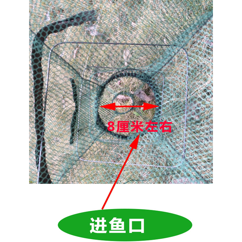 Reinforced Folding Shrimp Net Fish Net Dragon Small Shrimps Shrimp Net Spring Netting Fish Cage Shrimp Cage Fishnet