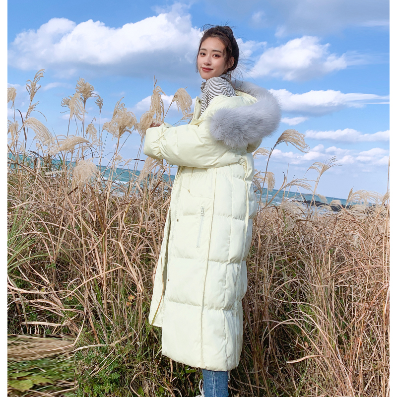 New arrival 2019 women winter long parka cotton padded warm coats fash_B6_17