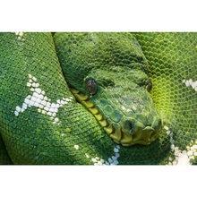 Крутой viper diy картина вышивка крестиком Стразы мозаика полностью