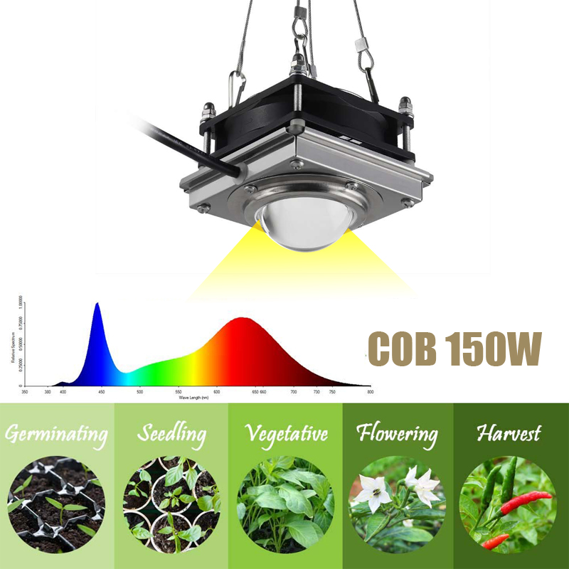 Grow Light Upgrade COB  Led Full Spectrum Plant Lighting With Rear Fan Hooks  For Indoor Therapy, Grow Box, Hydroponic Plants