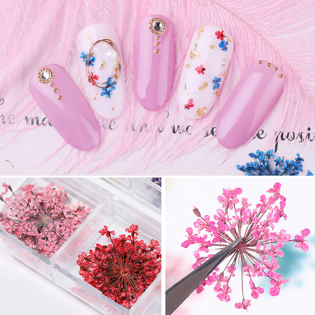 1 Box 3D Dried Flower Nail Decoration Natural Floral Sticker Mixed Dry Flower DIY Nail Art Decals Jewelry UV Gel Polish Manicure 4