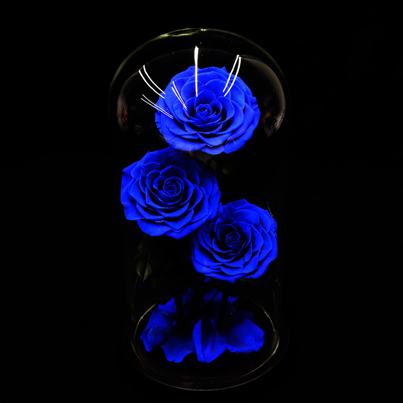 Вечные цветы сушеные цветы сохраненные свежие цветы живая Роза стеклянный купол подарочная коробка синий - 3