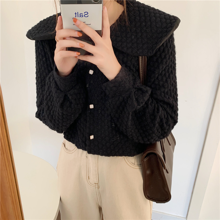 Hcccdd4e6c1504c46acd6c357e16e1f9fI - Spring / Autumn Big Lapel Long Sleeves French Lace Buttons Blouse