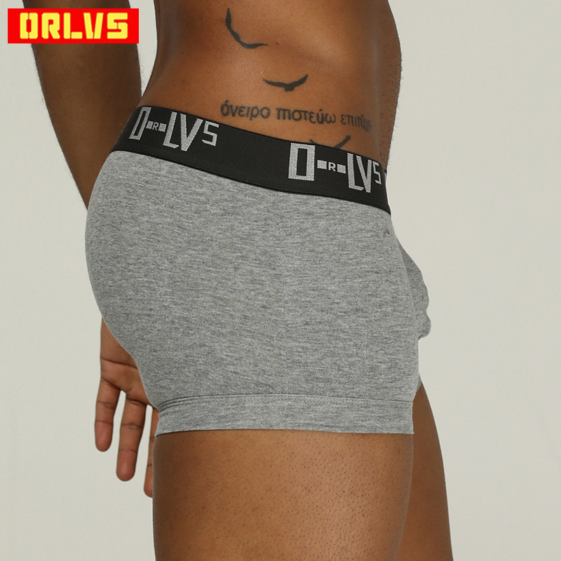 ORLVS Brand Men Underwear Sexy Men Boxers Cotton Quick Dry Slip Sexy Homme Transparent Mens Boxers Breathable Cueca Tanga OR210