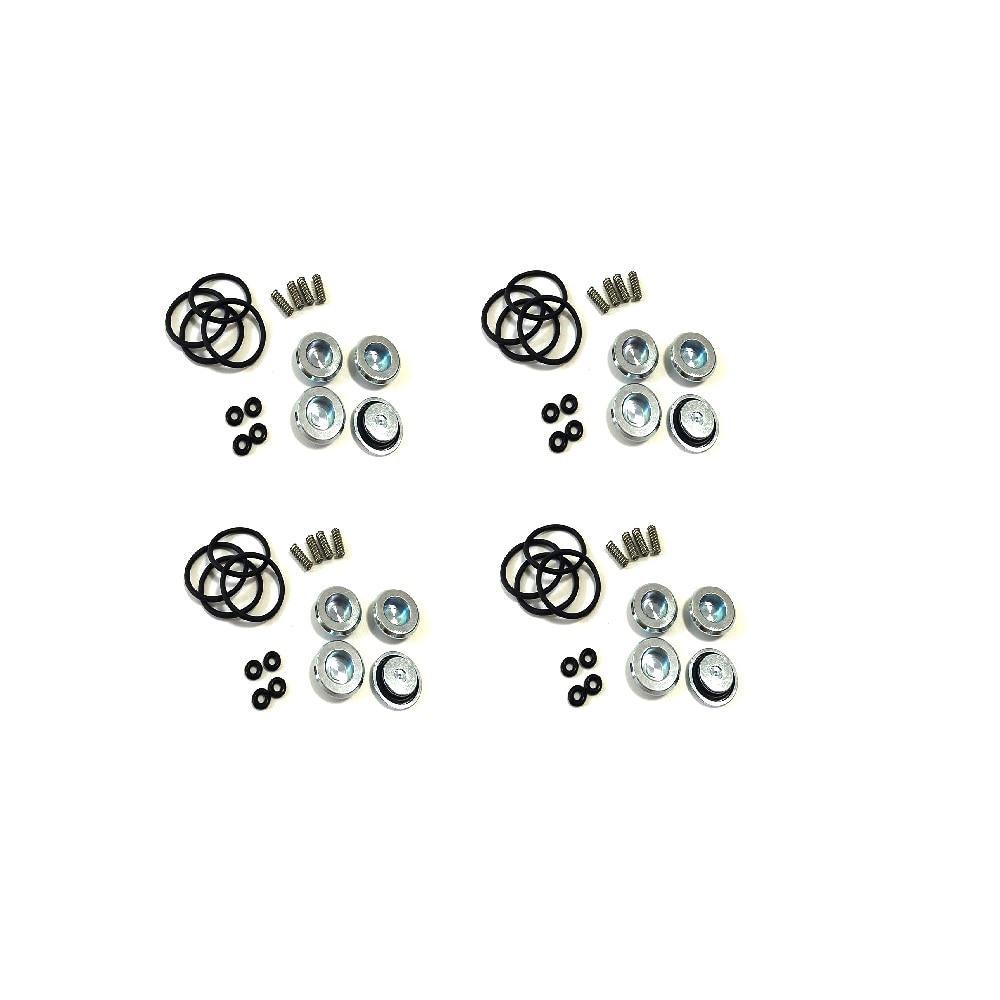 4 pack LPG CNG kits voor AEB Injector rail air nozzle spool lente BYD sx-4 reparatie kit