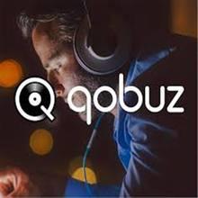 Qobuz Studio Qobuz Premium tv-stick tv-box dostawa laptopa Tv Stick roku Tv, pudełko dostępne 100% stabilny Laptop Ul