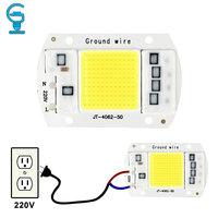 LED Chip 10W 20W 30W 50W COB Chip LED Lamp 220V 240V No Need Driver for Flood Light Spotlight Lampada DIY Lighting
