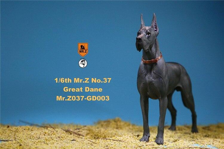 Mr Z Animal Model No.37 1//6th The German Great Dane Dog Pet Figure Model