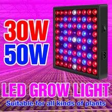 LED Wachsen Licht Für Indoor Anlage Lampe 30W 50W LED Gesamte Spektrum Wachsen Zelt Licht Anbau LED Phyto lampe Blume Gewächshaus Fitolamp
