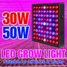 Luz LED de cultivo para planta de interior, lámpara LED de espectro completo, luces crecimiento para tienda, lámpara de Fitolamp para invernadero de flores, 30W, 50W