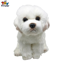 Lifelike Maltese Dog Malta Puppy Plush Toy Triver Stuffed Animal Doll Baby Kids Children Birthday Gift Home Shop Decor
