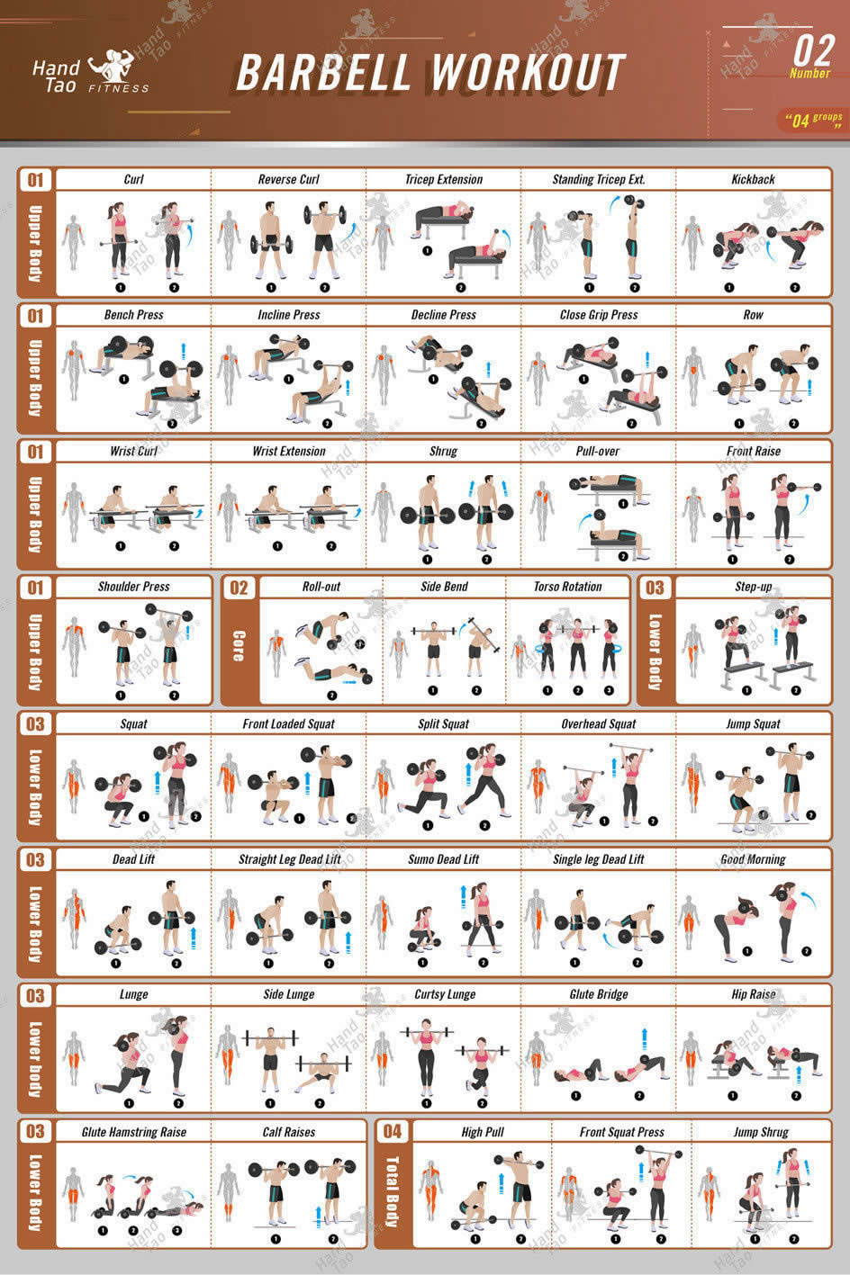 Barbell Workout Exercise Poster Bodybuilding Guide Fitness Gym Chart Silk Poster Decorative Painting  24X36Inch