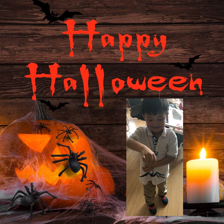 5ft Fake Spider Black Toy Halloween Large Funny Joke Prank Props Party Gift
