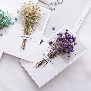 Image 3 - 10pcs Gypsophila fiori secchi scritto a mano benedizione biglietto di auguri di carta regalo di compleanno inviti di nozze