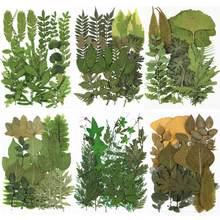 1 pacote folhas secas flores plantas verdes diy cristal cola epoxy resina coaster decorações de enchimento silicone molde acessórios